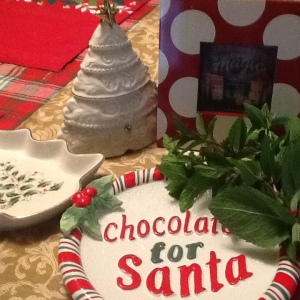 Chocolate Mint for Santa