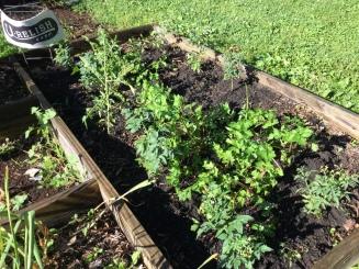 Porch to garden 003